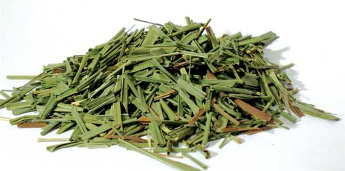 Lemongrass cut 1oz (Cymbopogon citratus)